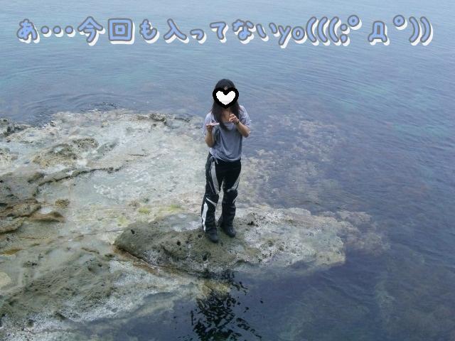 CIMG7714aa.jpg