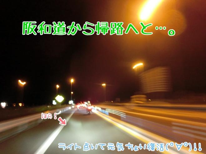 CIMG7812.jpg