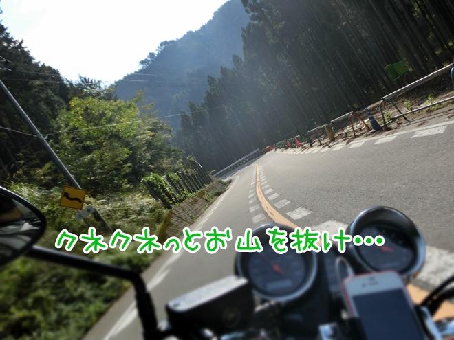 CIMG7835.jpg