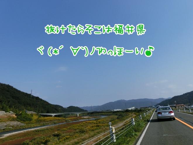 CIMG7837.jpg