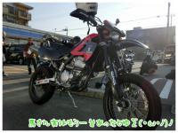 CIMG7889.jpg