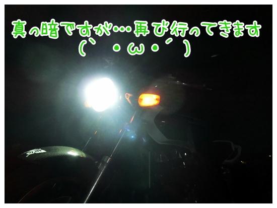 CIMG8013.jpg