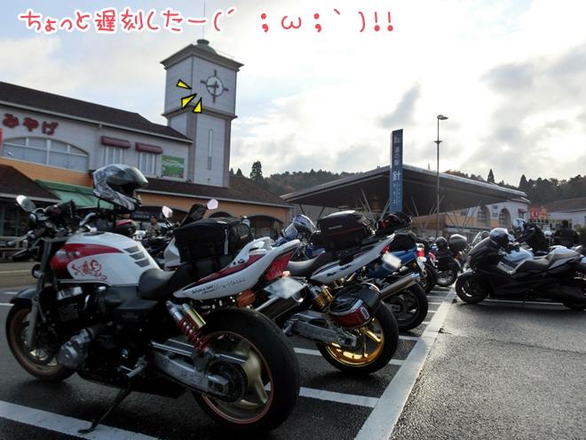 CIMG8110.jpg