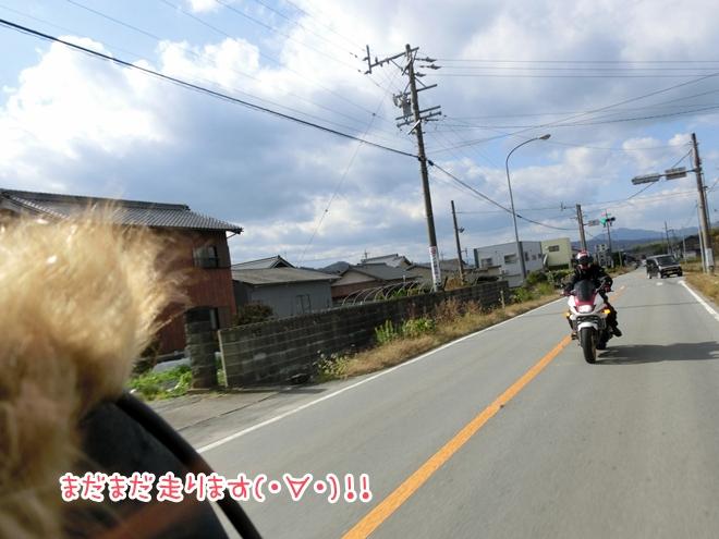 CIMG8136.jpg