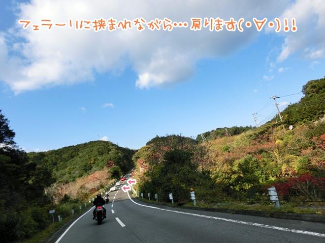 CIMG8160.jpg