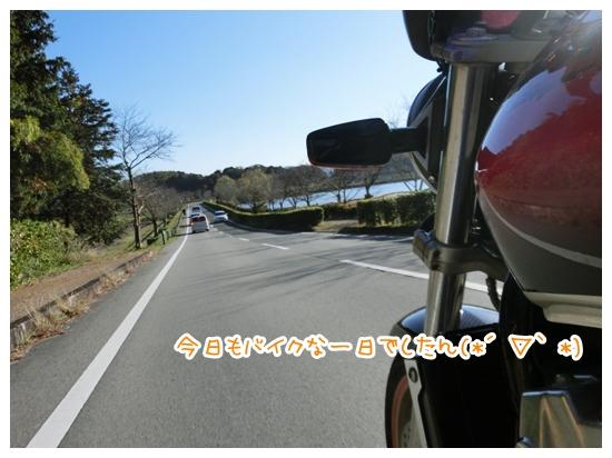 CIMG8332.jpg