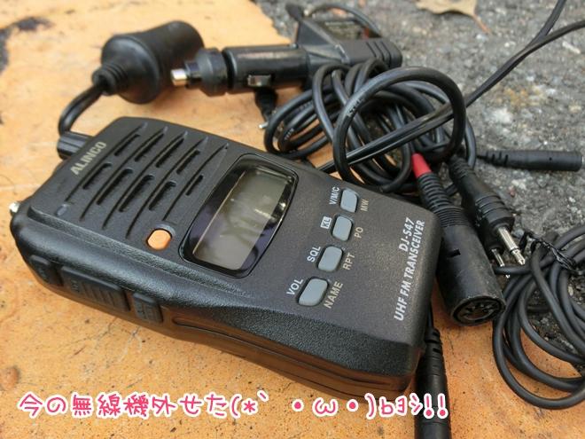 CIMG8361.jpg