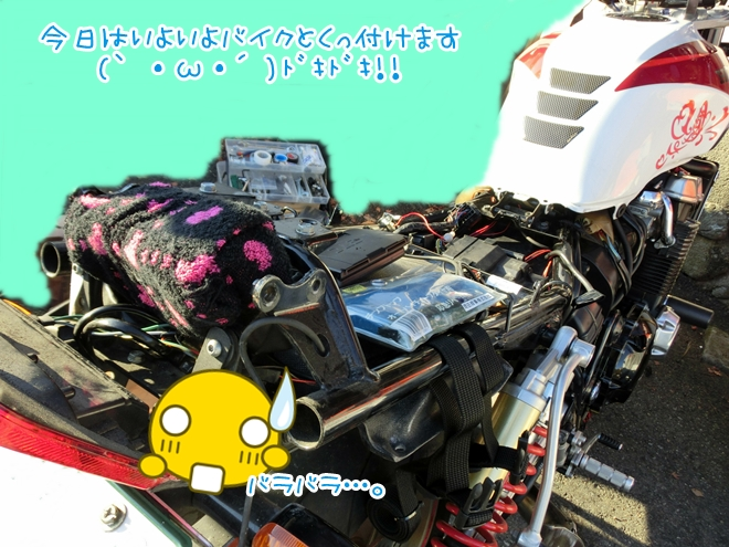 CIMG8374.jpg