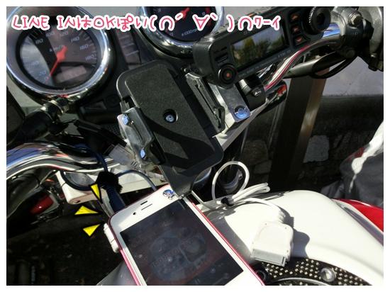 CIMG8378.jpg