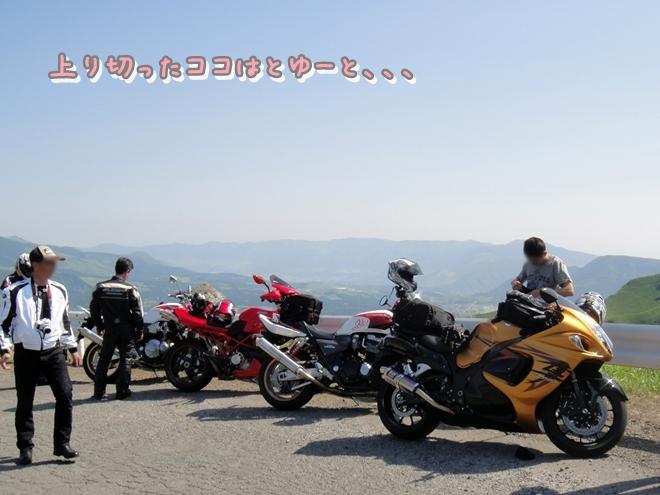 DSC05141.jpg