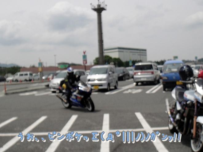 DSC05650.jpg