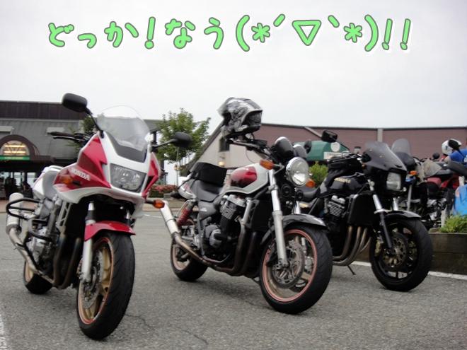 DSC05864.jpg