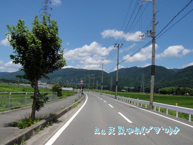 DSC05878.jpg