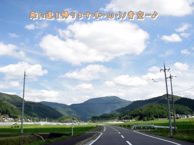 DSC05894.jpg