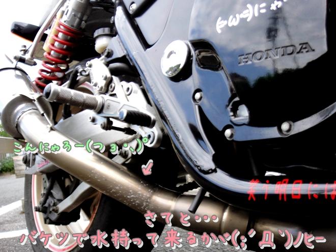 DSC05900.jpg