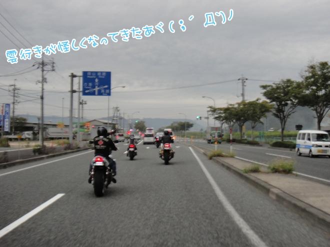 DSC05966.jpg