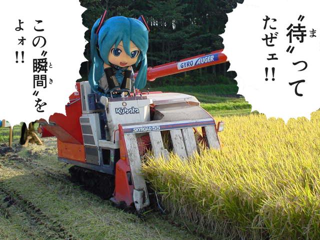 mikudayo009.jpg