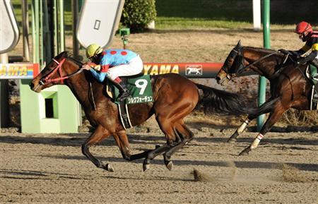 ダート短距離重賞3勝のシルクフォーチュン、高松宮記念(G1)へ 新馬戦5着以来の芝挑戦、横山典騎手が進言