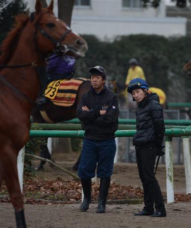 有馬記念 調教評価 by もーりす