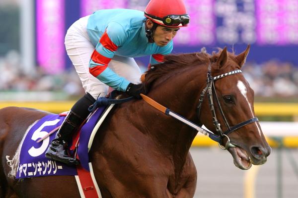 ヤマニンキングリー(牡8)が地方競馬に移籍、札幌記念・シリウスSなど重賞3勝[04/25]