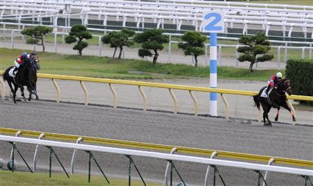 シュトラールが新馬戦(1200m)で15馬身差強すぎてワロタwww
