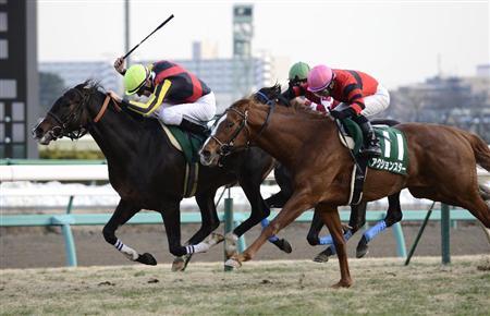 【競馬】京成杯勝ち馬フェイムゲーム(牡3)が左前脚骨折、全治半年