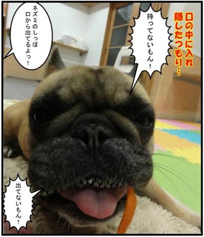 野梨子ねずみのおもちゃ_5