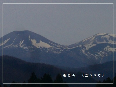 bb-001_20120429215024.jpg