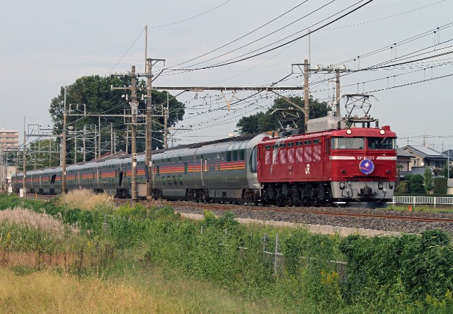 EF81-133.jpg