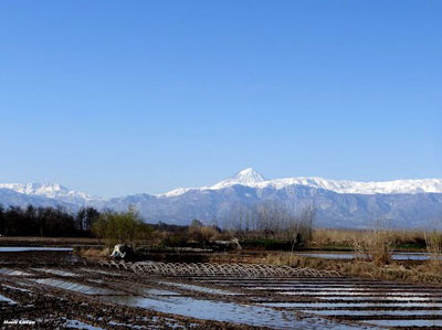 カスピ海側の田と山