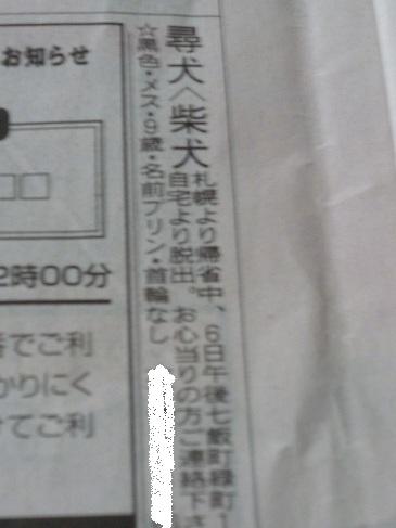 P1040164.jpg