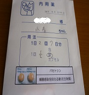 P1040956.jpg