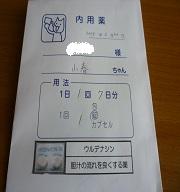 P1040957.jpg
