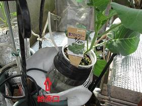 ①10・10自動給水装置