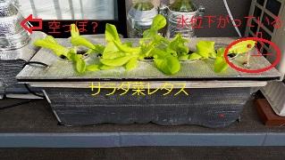 10・26ブログ写真③