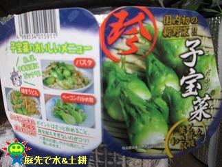 子宝菜11・21