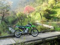 DSCN4667m.jpg