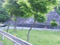 DSCN5499m.jpg
