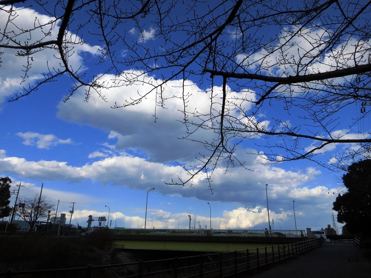 141205青い空白い雲-03