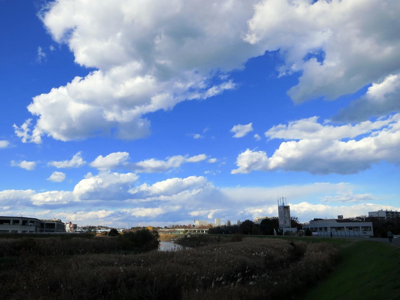 141205青い空白い雲-04