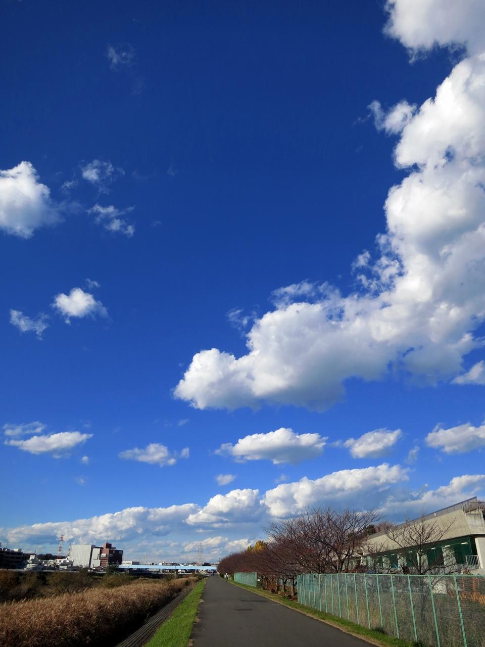 141205青い空白い雲-07