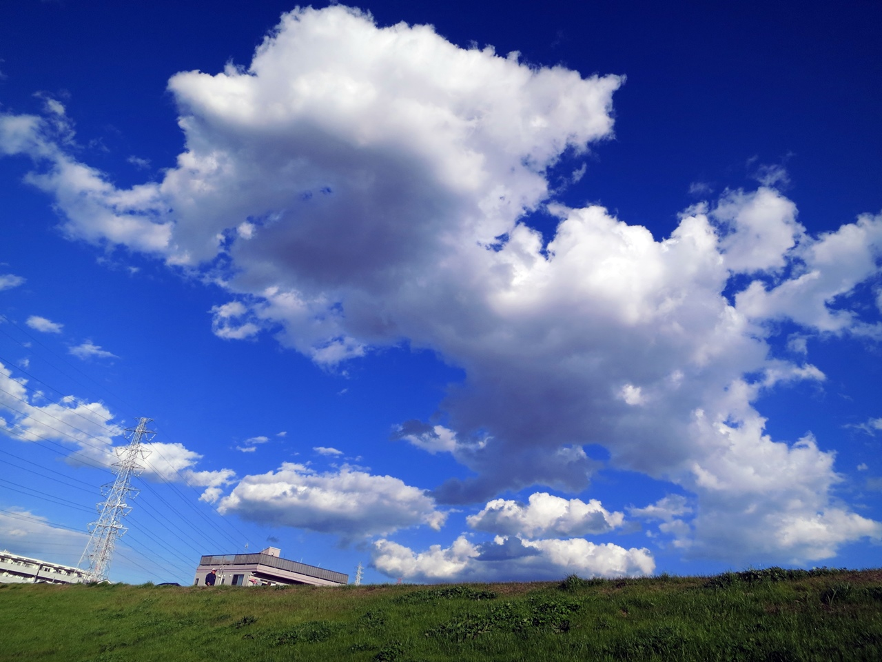 141205青い空白い雲-08