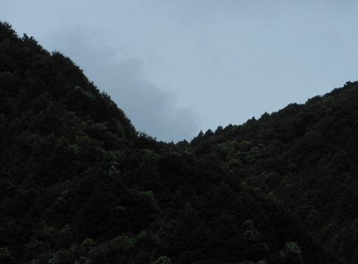 masitaga1