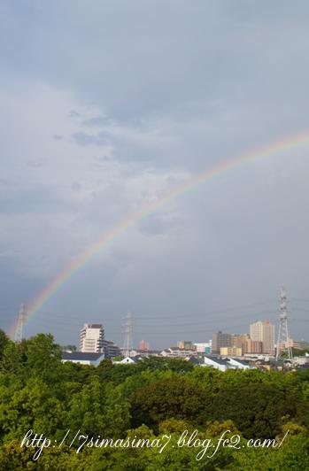 虹をみたかい?