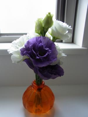 0627花