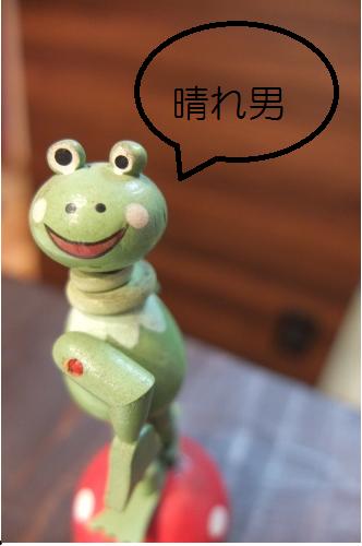 晴れ男カエルさん