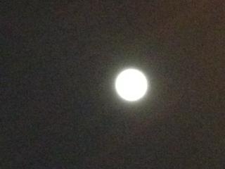 0801月夜