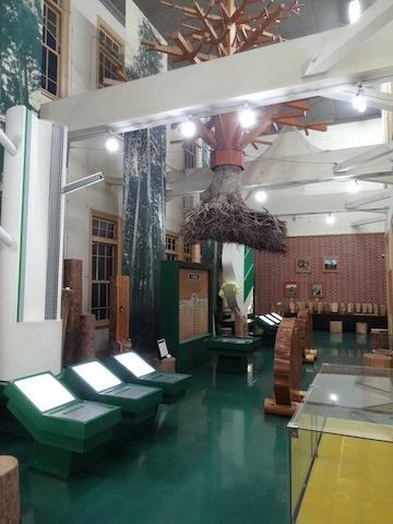 1124森林博物館7