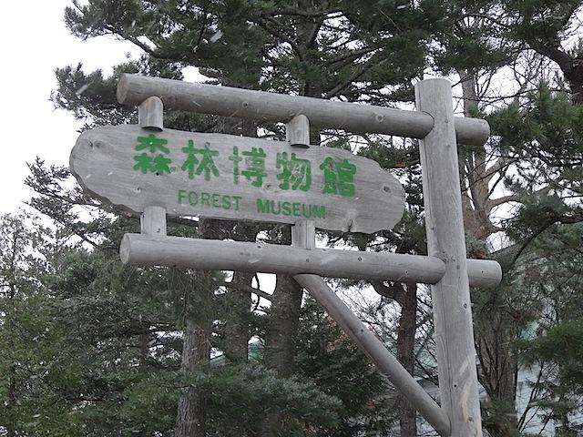 1124森林博物館