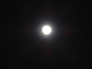 0225夜